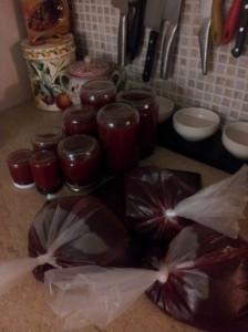 Plums, plums, plums...  Three liters of Plum Saunce should get us through the winter and all the dumpling making planned! Might use some for a pork roast as well...